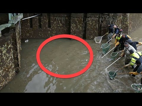 When Authorities Drained This 200 Year Old Canal, What They Found At The Bottom Was Extraordinary