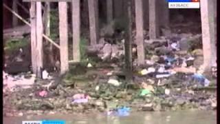 видео Пангасиус: что за рыба, фото, чем питается и где обитает, как выглядит, отзывы