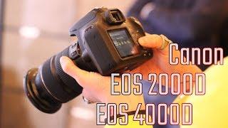 Nuove reflex Canon EOS 2000D e 4000D