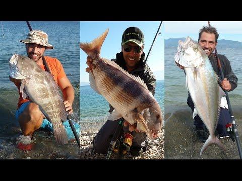 ΟΛΑ ΤΑ ΨΑΡΙΑ ΤΟΥ HEAVY CASTING !!! GREAT LIVE BAIT FISHING FOR VARIOUS FISH!!!