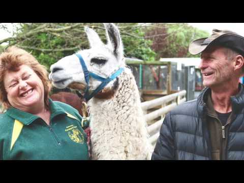 Cliff & Dyan LeComte - Farmyard Zoo - EPISODE 26