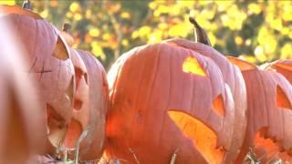 Spooky Twisties I Trailer