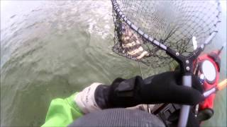 Galveston Bay Kayak Fishing 2013  in late November (Redfish, flounder, trout, and sheephead)