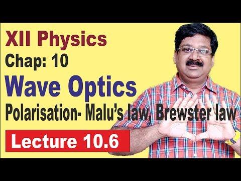 NCERT-XII-Physics-Chap-10.6-Polarisation, Malu's Law, Brewster law- Wave optics