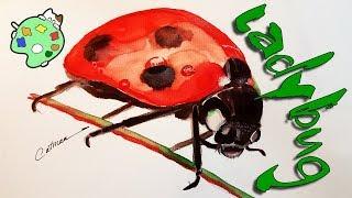 ladybug easy drawing step