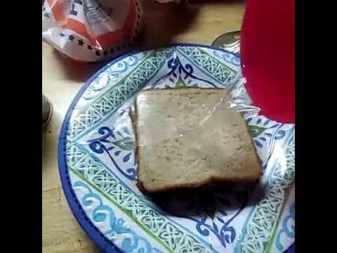 0 Yeet1 S Water Sandwich Youtube Shop sandwich drink bottles designed by artists. 0 yeet1 s water sandwich