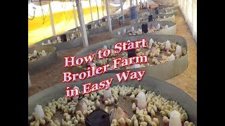 How to Starts  Broiler Poultry form /How to Starts  Chicken Poultry form in India
