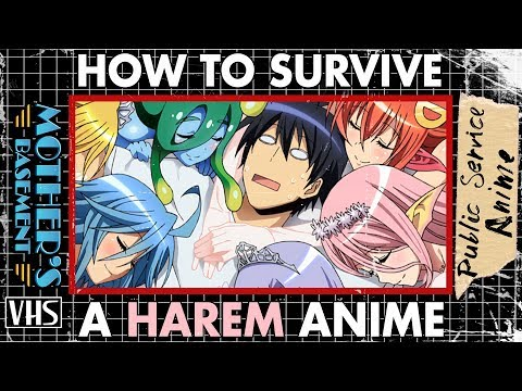 How to Survive a Harem Anime  Public Service Anime