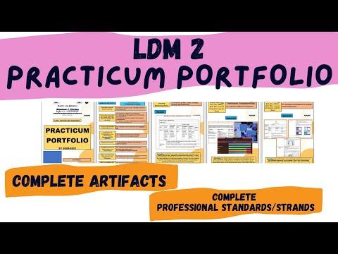 Download LDM 2 Practicum Portfolio