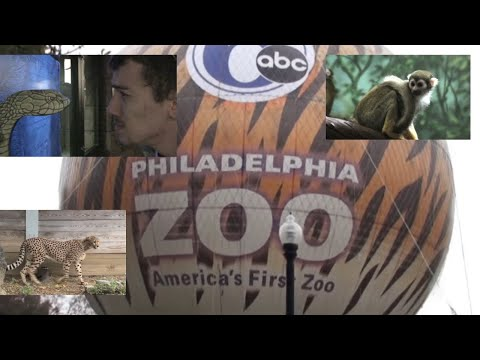 The Philadelphia Zoo Adventure