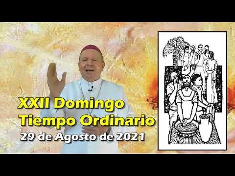 XXII DOMINGO ORDINARIO