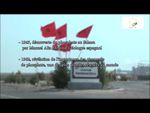 Polisario: Identité d'un front, version française