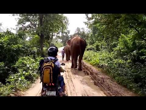 Kolkata to Ranchi bike riding   Dalma   Jamsedhpur   Patratu