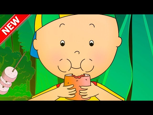 CAILLOU GOES CAMPING   Cartoons for kids    Funny Animated Cartoons for Children