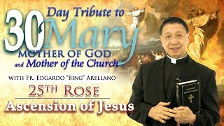30 DAY TRIBUTE TO MARY 25TH ROSE:    Ascension of Jesus