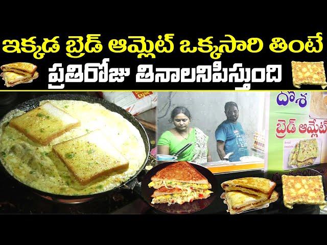 Amazing Bread Omelette Sandwich | Egg Dosa | Homley Tiffins | Kukatpally | PDTV Foods