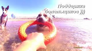 Куба, уроки ныряния и летающая собака
