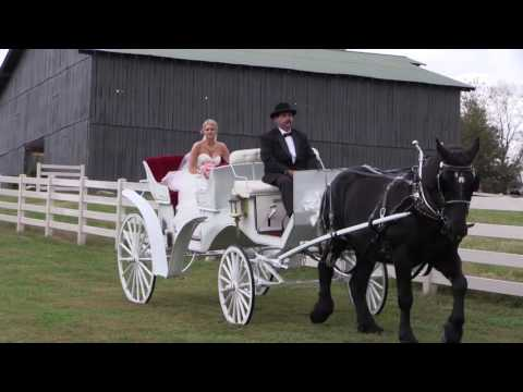 Mary & Justin Draper Wedding 10/24/15 (Full Length)