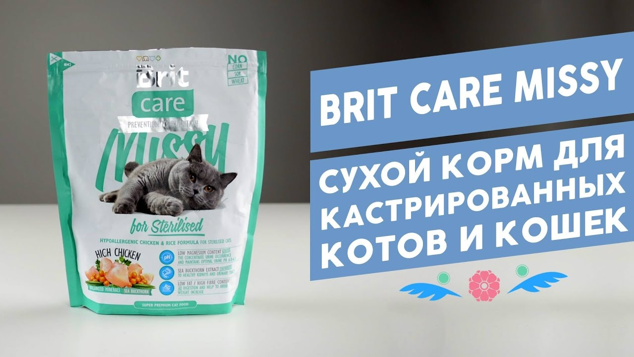 Купить корм брит (brit) для собак и кошек по низкой цене. Интернет магазин предлагает сухой корм брит с доставкой по минску. ☎ +375 (29) 323-60-44.