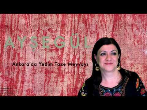 Ayşegül - Ankara'da Yedim Taze Meyvayı [ Güzelleme 3 © 1997 Kalan Müzik ]