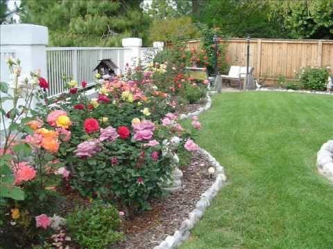 The Rose Garden of Richard Lee Orey