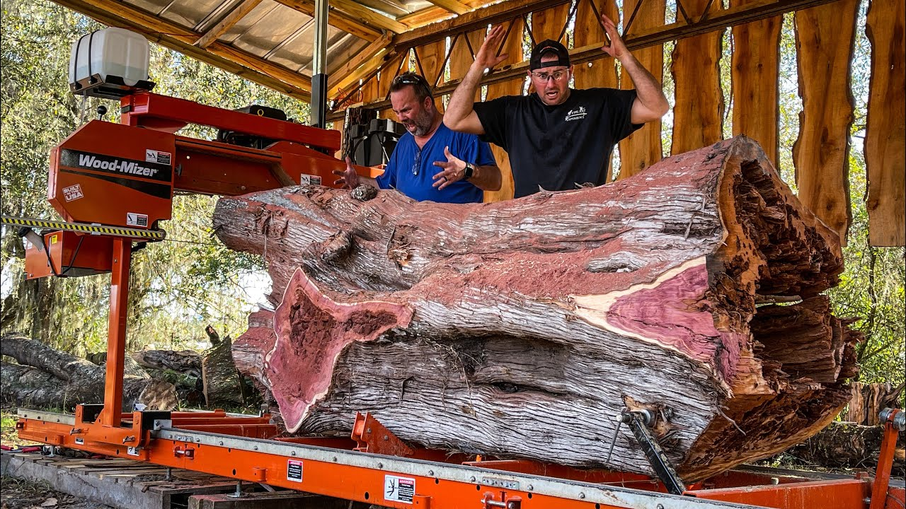 INSANE Cedar Log with Hidden Surprises - 15