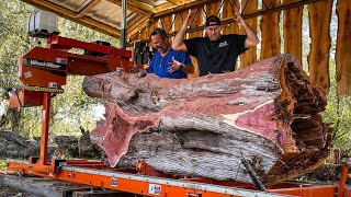 INSANE Cedar Log with Hidden Surprises  15