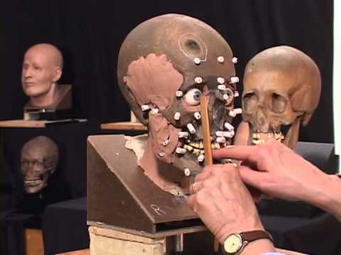 The Science and Art of The Facial Reconstruction Process
