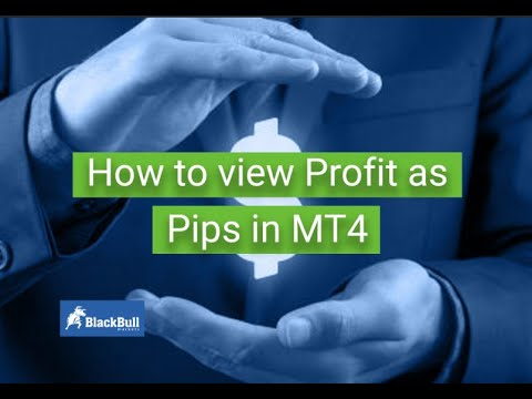 How To View Profit As Pips In Mt4 Blackbull Markets Youtube