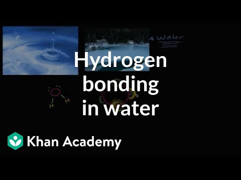 Hydrogen bonding in water | Water, acids, and bases | Biology | Khan Academy