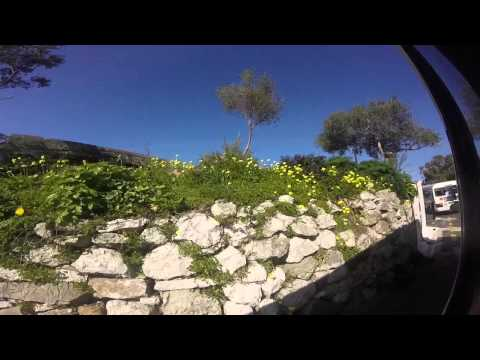 Laurier Senior Europe Trip 2015