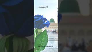 Aaqa ka Gada Hun - Muhammad Shahbaz Qadri   Naat Stutus Video   Heera Gold,
