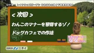 BS朝日にて毎週木曜よる10時54分より大好評放送中! (千葉テレビ・テレ...