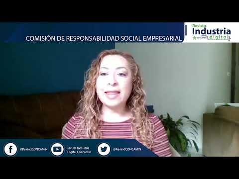 COMISION DE RESPONSABILIDAD SOCIAL EMPRESARIAL