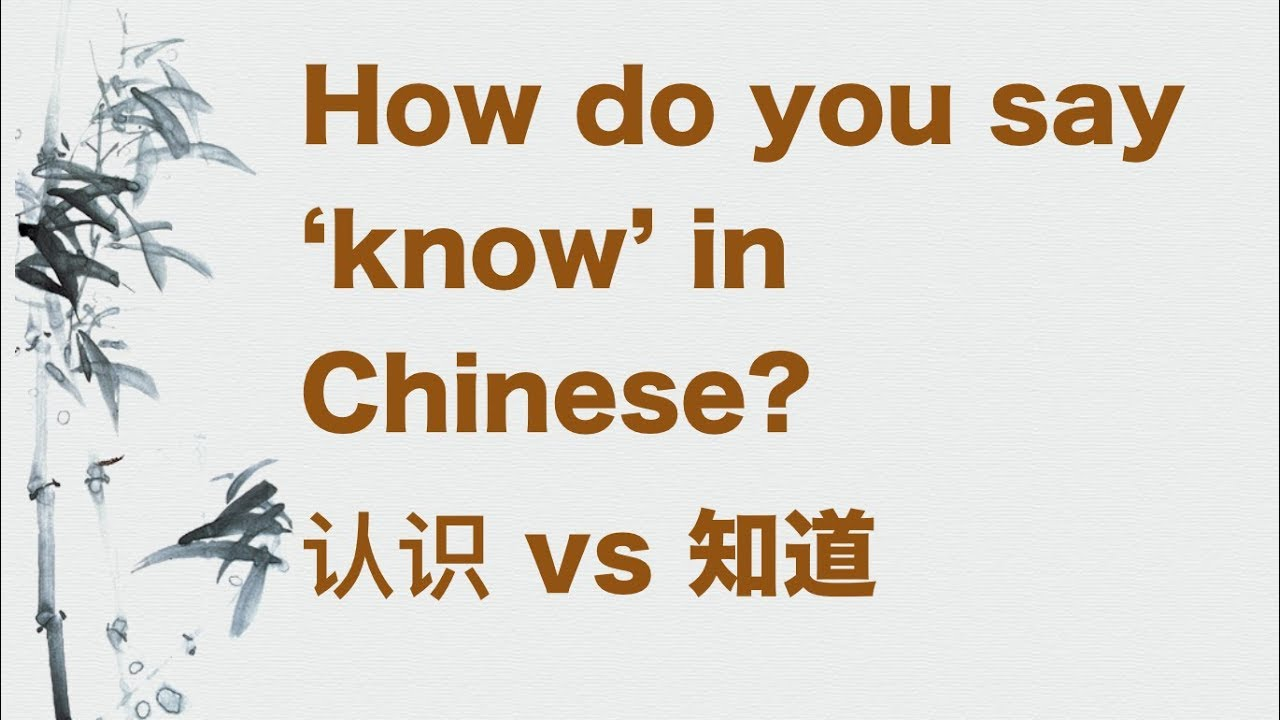 how to say you are crazy in chinese