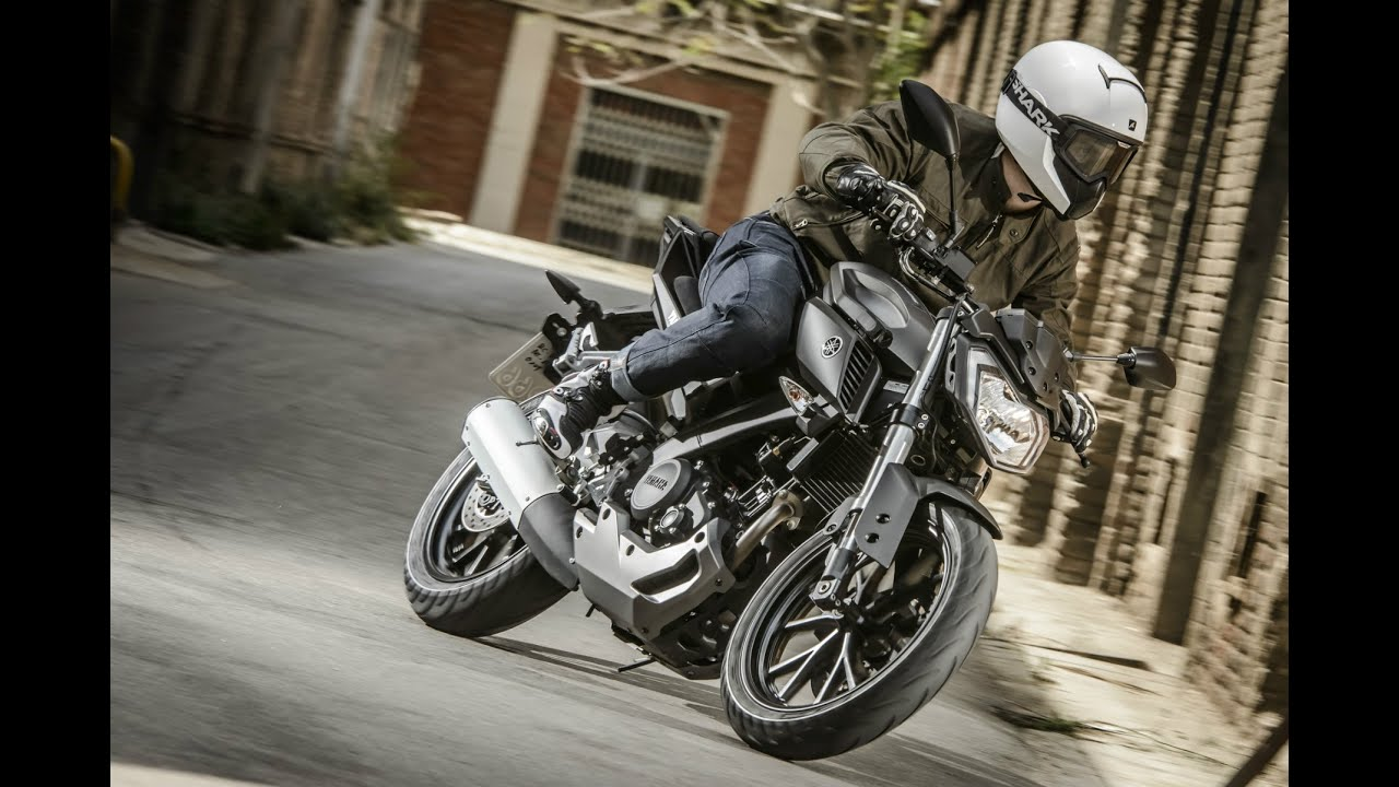 The 10 Best Beginner Motorcycles (With images)   Beginner