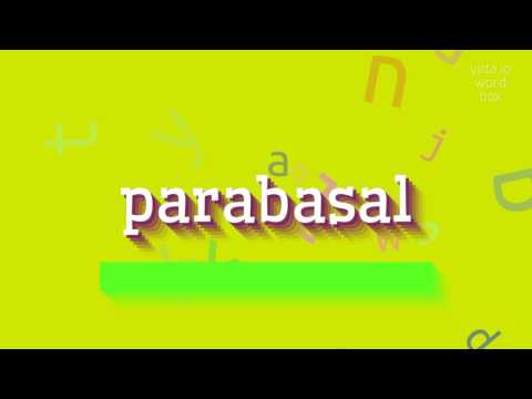 """How to say """"parabasal""""! (High Quality Voices)"""