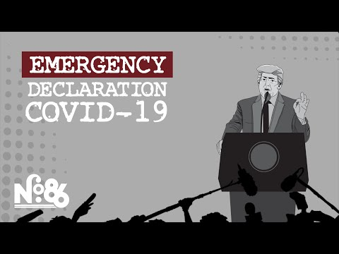Does The National Emergencies Act Increase Presidential Power? [No. 86]