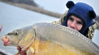 We wanted pike but we got a big carp - Old San Hurko | Carp fishing