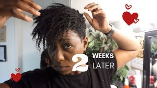 How to take Mini Twist Out without Breakage   Natural Hair Protective Styling
