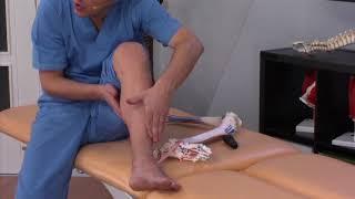 Espinillas masaje en las dolor