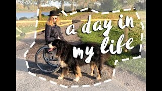 A day in my wheelchair life - shopping and dog walks! #Wheelchairlife