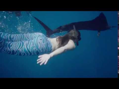 Underwater with Sailfish