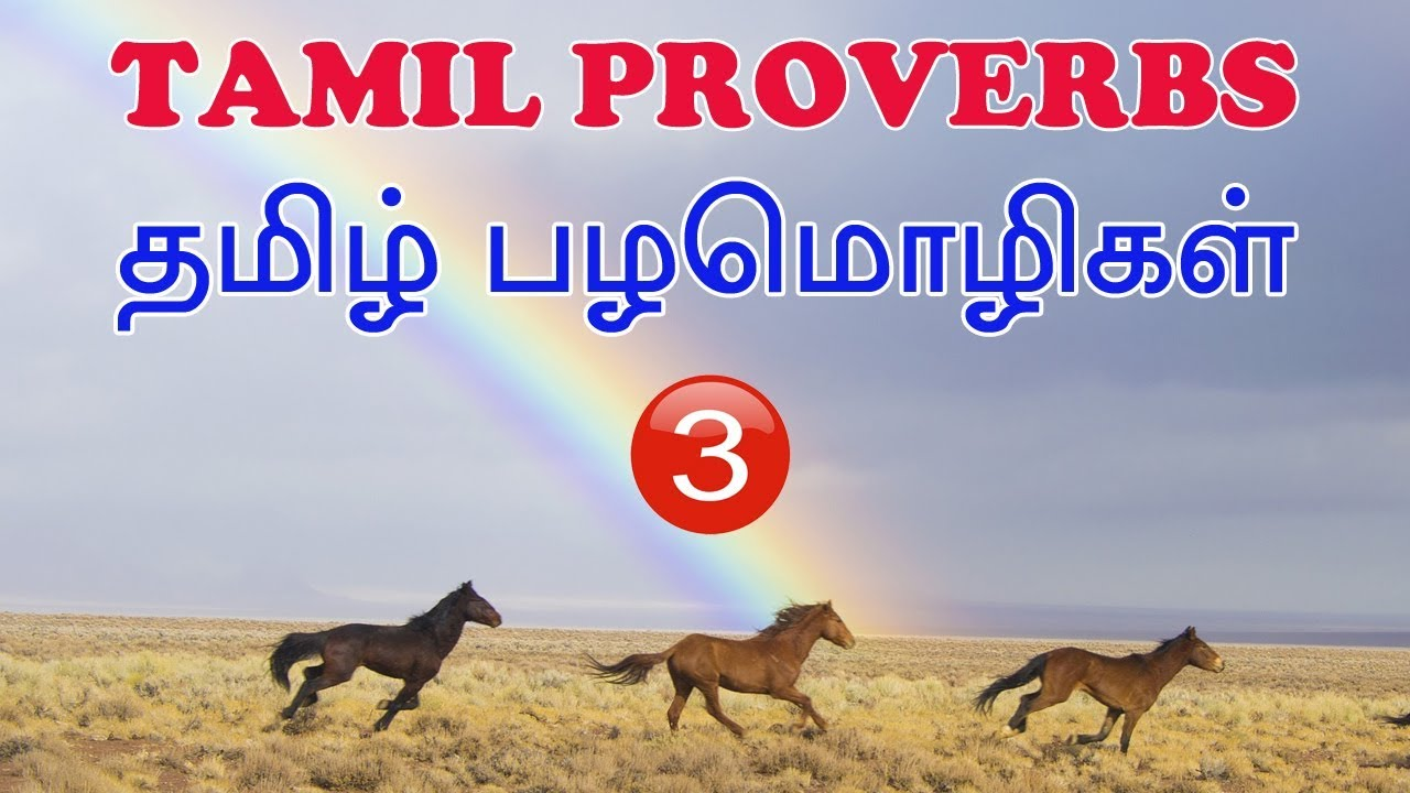 Tamil Proverbs Part 3 Youtube