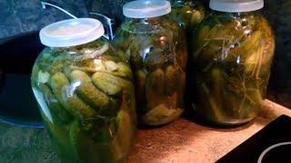 Солёные огурцы на зиму /  Мой самый любимый рецепт / Salted cucumbers