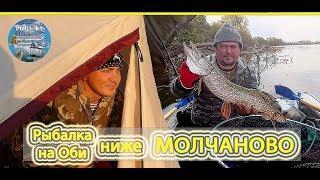 Риболовля на Обі нижче МОЛЧАНОВО!