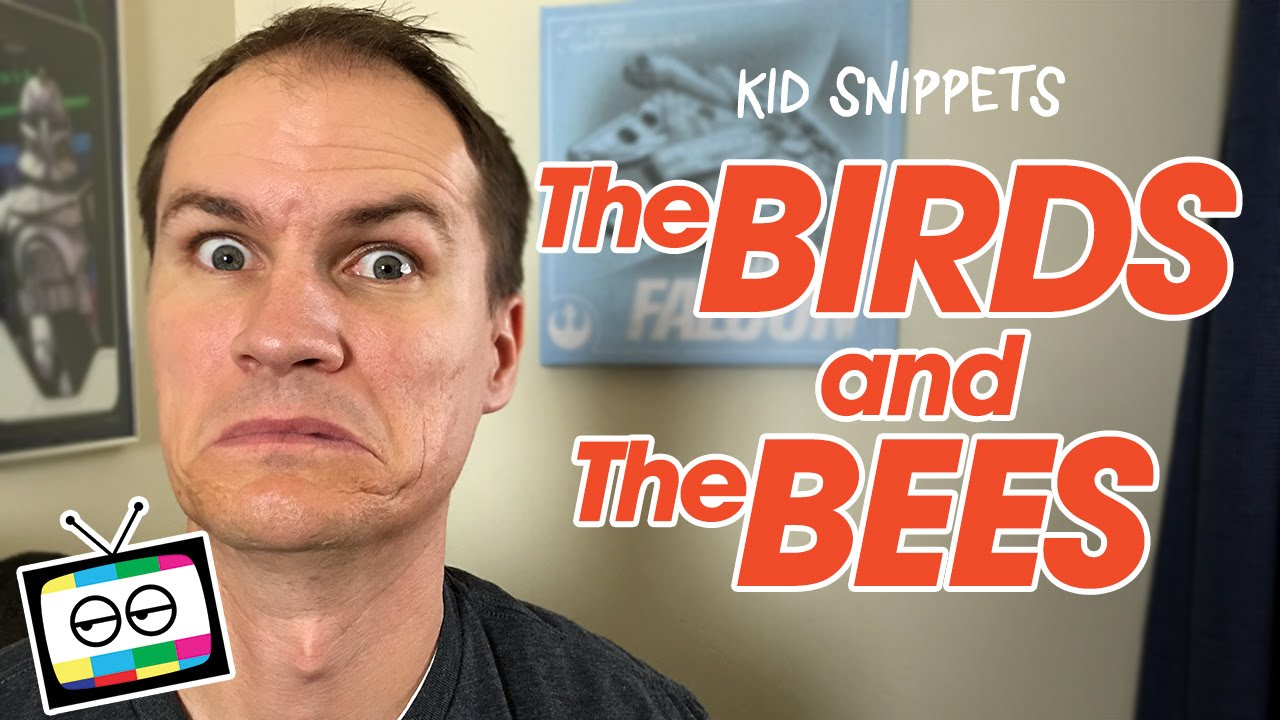 What are the birds and the bees?