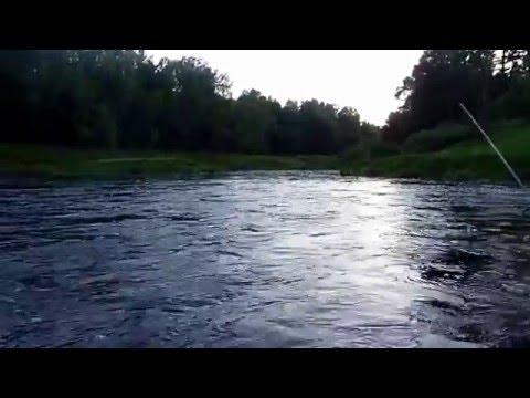 рыбалка на меже костромской области