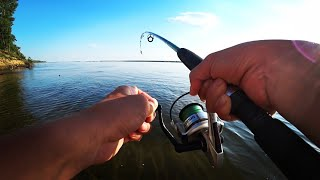НА ЖМЫХ КЛЮЕТ ВСЁ! ПОЙМАЛ ЗАПРЕЩЕННУЮ К ВЫЛОВУ РЫБУ! Рыбалка Волга Астрахань 2020. Ловля сазана.