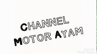 Cara setting nut clutch motor